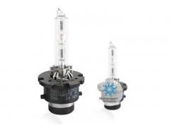 Ксеноновая лампа Maxlux D4S